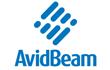 AvidBeam System Integration Services