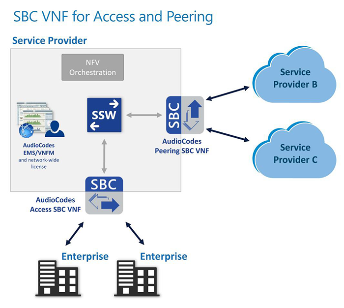 SBC VNF for Access and Peering